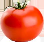 flora-foods_veg2-1
